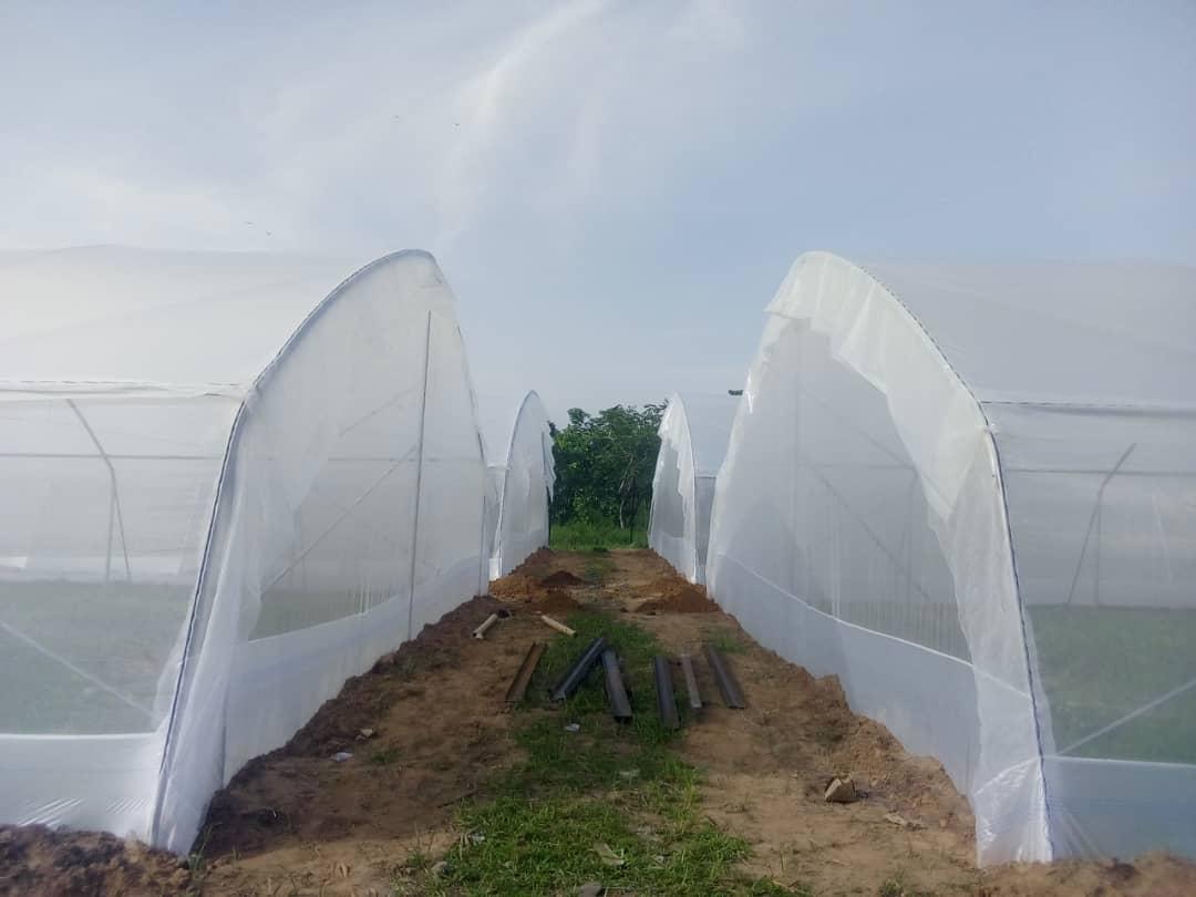 Madular Greenhouse Kit